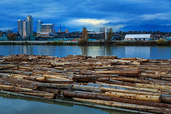 Fraser River, Vancouver (aud.watson) Tags: canada britishcolumbia vancouver fraserriver port logging log logs timber timberexport dusk sunset city water