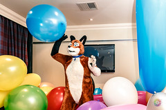 Balloon Party - March-31-2018-2049'39-IMG_8194 (SGT.Tibbs) Tags: 31032018 balloonparty bristolfilton convention furries furry furryculture fursuits hobby holidayinn justfurtheweekend lgbtqia people subculture