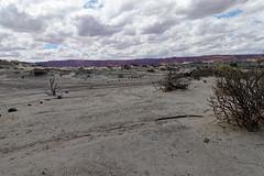PaniPodroznik-ValledelaLuna-201803-49 (www.PaniPodroznik.pl) Tags: argentina southamerica valledelaluna panipodróżnik mstraveler gapyear amazing awesome beautiful