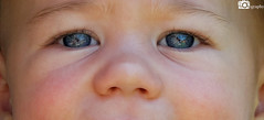 Sparkly Eyes (Mike House Photography) Tags: baby eyes beautiful blue reflection sharp close macro happy love father son daddy proud family mummy mother handsome