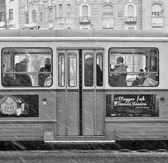 Cold Commuters (tcees) Tags: bartókbélaway budapest hungary buda snow snowing people men women tram building windows streetphotography street urban bw mono monochrome blackandwhite nikon d5200 1855mm balcony tree commuters road window cold freeze freezing advert hat