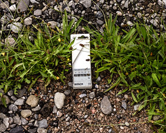 You Know the Drill (Steve Taylor (Photography)) Tags: drill case holder bosch green brown white grey gravel pebbles stones newzealand nz southisland canterbury christchurch cbd city weeds dandelion bit