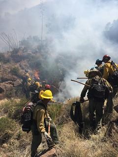 Fighting the Sombrero Fire