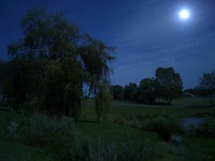 Moonlight over the hill (LUMEN SCRIPT) Tags: tourism travel blue colours skyline sky atmosphere mood light nature ruralphotography tree countryside country france loirevalley landscape moon lake hill nightphotography lowlightphotography moonlight