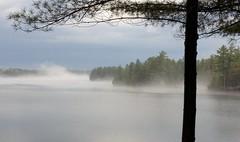 Misty Muskoka (davidparratt) Tags: fog lakemuskoka muskoka