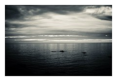 reflection...of magic hour (kouji fujiwara) Tags: fine art fineart blackandwhite monochrome noir dark sigma sigmadp2 dp2 foveon seascape sunset dusk seaofjapan 日本海 笹川流れ