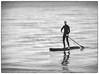 paddle boarding (Mallybee) Tags: panasonic bw sea board paddle paddleboarding cleethorpes mallybee dcg9 g9 lumix 45150mm