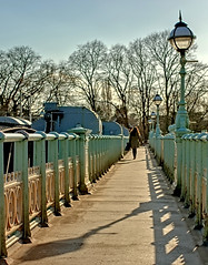 Into the Trees (shaunmck1) Tags: colour bridge person walking shadows london pentax trees footpath outdoors outside