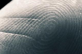 Fingerprint - empreinte
