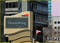 180426 A neighbourhood in shock (19) (Aben on the Move) Tags: toronto canada ontario vanattack torontomassacre yongeandfinch people community grief loss mourning renewal courage torontostrong