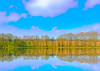 A vision of my new Heart (evakongshavn) Tags: blahblahscape landscape landschaft paysage mirrormirror mirror tree forest lake green light pastel clouds art artistic fineartphotography natureart