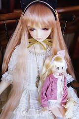 Polish BJDream Forum Anniversary Doll Meet (Muri Muri (Aridea)) Tags: doll meet dollmeet ball abjd dolls