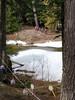 Tamarisk Easter egg hunt (Ruth and Dave) Tags: children easterbunny tamarisk whistler alphalake easter egghunt forest lake ice snow frozen woodland