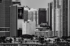 City of Miami, Miami-Dade County, Florida, USA (Jorge Marco Molina) Tags: miami florida usa miamibeach miamigardens northmiamibeach northmiami miamishores cityscape city urban downtown density skyline skyscraper building highrise architecture centralbusinessdistrict miamidadecounty southflorida biscaynebay cosmopolitan metropolis metropolitan metro commercialproperty sunshinestate realestate tallbuilding midtownmiami commercialdistrict commercialoffice wynwoodedgewater residentialcondominium dodgeisland brickellkey southbeach portmiami sobe brickellfinancialdistrict keybiscayne artdeco museumpark brickell historicalsite miamiriver brickellavenuebridge midtown sunnyislesbeach moonovermiami