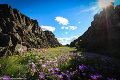 Iceland_Pingvellir (Lothar Heller) Tags: almannagjáschlucht lotharheller thingvellir iceland island islandia þingvellir