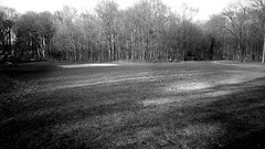 Open Space 3 (Jeffery Womack) Tags: novi greenway 2018earylyspring samsunggalaxy8plus monochrome smartphonephotography nature water openspace blackandwhite dramaticmonochrome hikingtrails trees mayburystatepark michigan northville unitedstates us