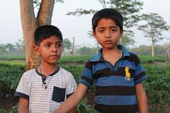 Sonari kids. Assam, India (n1ck fr0st) Tags: sonari kids assam india tea plantation