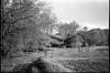 pastoral landscape, pathway, fence, Biltmore Estate, Asheville, North Carolina, Nikon L35AF2 (One Touch), Kodak TMAX 400, Ilford Ilfosol 3 developer, mid April 2018 (steve aimone) Tags: landscape pasture pastoral fence posts pathway biltmore biltmoreestate nikonl35af2 onetouch kodaktmax400 ilfordilfosol3developer 35mm 35mmfilm film blackandwhite monochrome monochromatic