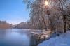 Pour ma fille Jessica . (gillesfournier005) Tags: d5100 hiver neige couleurs arbre étang eau feuille soleil lumière ciel