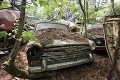 IMG_5770 (mookie427) Tags: urbex urban explore exploration explorers exploring ue derelict abandoned decay decayed ruin ruined car graveyard scrapyard old junkyard rusty rusted classic cars city georgia usa