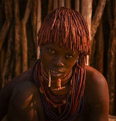Hamar woman (Rod Waddington) Tags: africa african afrique afrika äthiopien ethiopia ethiopian ethnic etiopia ethnicity ethiopie etiopian omovalley omo outdoor omoriver hamer hamar tribe traditional tribal culture cultural woman outdoors beads married village