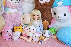 [May of Dolls 12/31] - Soft ♥ (SunShineRu) Tags: minifee juri 13 2013 juri13 juri2013 event head fairyland bjd ball jointed doll cute soft kawaii may dolls amuse plushie