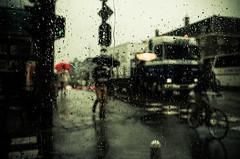 Shadows in the Rain (2) (damar47) Tags: holland netherlands paesibassi olanda travel travelphotography trip roadtrip pentax pentaxian k30 pentaxiani pentaxart reflex amsterdam urban city urbanphotography walkingaround citycenter onthestreet street fromtheinside badweather rain raining pioggia shadows umbrellas ombrelli light lightroom adobelightroom lr5 ricohpentax