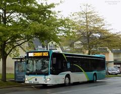 Mercedes Citaro C2 n°406 (ChristopherSNCF56) Tags: bus mercedes citaro c2 autobus hillion transport tub saintbrieuc urbains 406