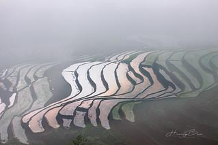 _U1H1381,0617 Lao Chải,Mù Cang Chải, Yên Bái.