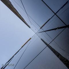X (ARTUS8) Tags: minimalismus quadratisch squareformat fassade abstrakt flickr lookingup fenster nikon1635mmf40 linien modernearchitektur nikond800 spiegelung