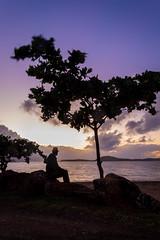 NGÉA TREE (LA GRANDE TERRE) Tags: baiedesaintmarie baiedestmarie beach canon efs1855mmf3556isii eos1300d newcaledonia ngea noumea nouvellecaledonie provincesud saintmariebay selfie southprovince stmariebay sunrise tree