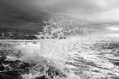Breaking Wave (Ronny Darko) Tags: splash water spritzer sturm storm wasser welle wave cloudy bewoelkt winter kontrast contrast