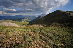 DSC00942 (kyleddsn) Tags: hiking utah ogden spring