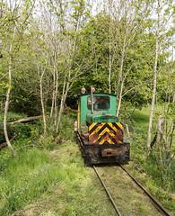 Blennerhasset Woodland (Kingmoor Klickr) Tags: blennerhasset watermill railway narrowgauge frankhibberd 3756 cumbria aspatria