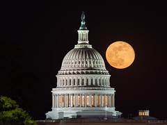 April's Pink Moon over the US Capitol Dome (Insite Image) Tags: districtofcolumbia washingtondc dc uscapitol moon fullmoon pinkmoon