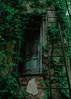 (Greyson Rose) Tags: abandoned green ladder door urbanexploration urbex urbandecay ruraldecay