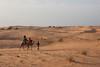 Camel Ride, Lompoul, Senegal (Geraint Rowland Photography) Tags: canon camelride lompoul senegal travelphotography geraintrowland camel camels geraintrowlandphotography heat africantravel wwwgeraintrowlandcouk