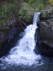 Swallows tail falls