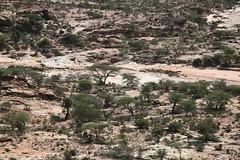 Laas Geel (2) (lyh513148) Tags: somaliland