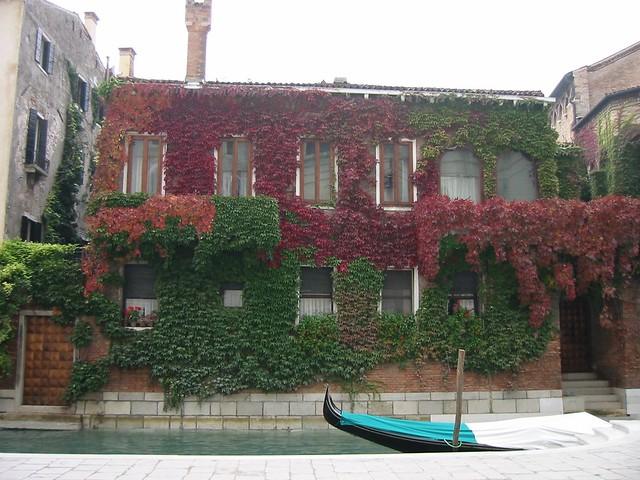 Venice : The Ivy House