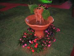 Festa das Flores - Flower Party (marcusrg) Tags: flowers flres flowerparty festadasflres