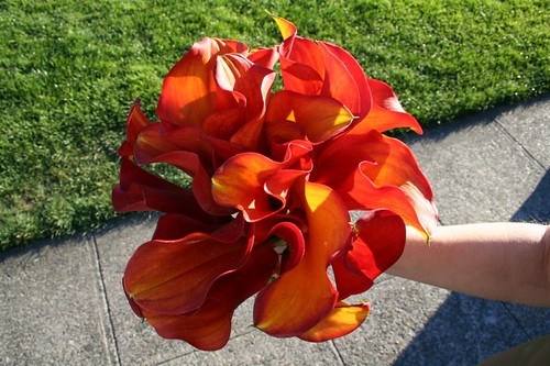 orange flowers bouquet. marcie flowers An orange calla