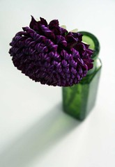 Beautiful Sunday 10.15 (Something To See) Tags: dahlia flower floral purple vase