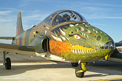 BAC 167 Strikemaster (Ken's Aviation) Tags: 2006 elpaso 167 bac strikemaster amigoairsho britishaircraft n2146j