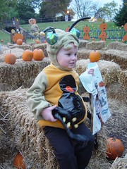 image courtesy of cdale dale goodwin flickr - Halloween Events In Louisville Ky