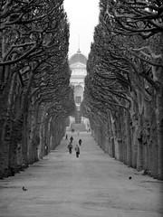 One Day In Paris - by Mocodragon