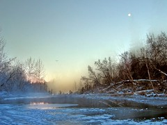 Beautiful Morning (jack4pics) Tags: moon cold bird ice fog alaska river bravo 8 matsu lovephotography abigfave