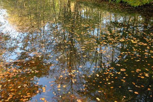 'Herfst Clingendael'
