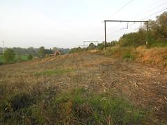 Near Tubize, Belgium (Koos_Fernhout) Tags: geotagged belgium belgique railway spoor strictly spoorwegen koos wallonie spoorweg chemindefer brabantwallon belgië koosfernhout geo:lat=50676106 geo:lon=4197507