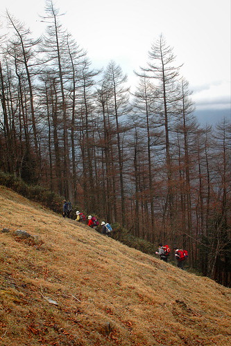 Hikers in Okutama
